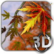Autumn Leaves 3D Wallpaper